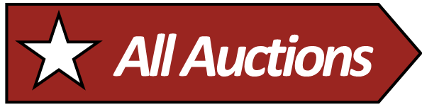 homepage auction buttons